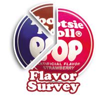 Flavor Survey