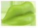 Wax Lips Lime Flavor