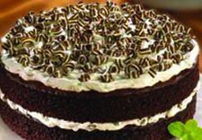 Andes Grasshopper Cake
